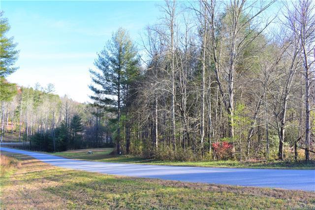 74 Crystal Heights Drive #1, Hendersonville, NC 28739 (#3340965) :: Puffer Properties