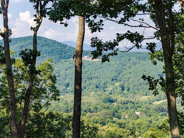 133 Boulder Creek Way #11, Asheville, NC 28805 (#3341793) :: Stephen Cooley Real Estate Group