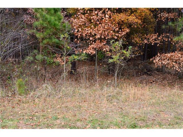 612 Kenway Loop #15, Mooresville, NC 28117 (#3341915) :: Cloninger Properties