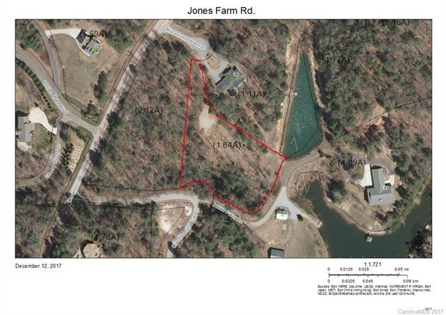 00 Jones Farm Road, Saluda, NC 28773 (#3344206) :: Cloninger Properties