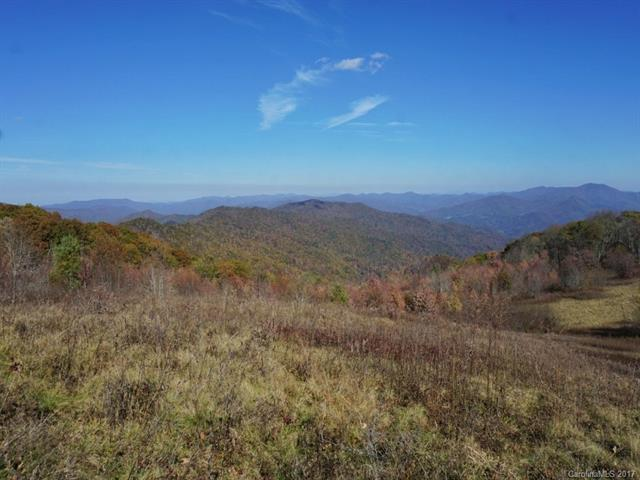 A20-22 Big Laurel Road A20-22, Waynesville, NC 28785 (#3346406) :: Exit Mountain Realty