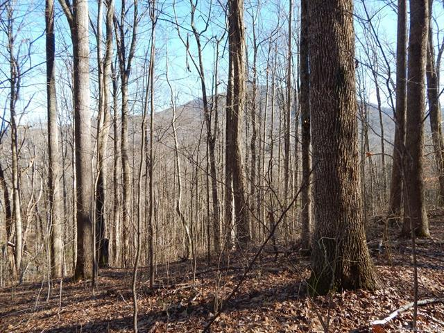 Lot 44 Fern Trail, Waynesville, NC 28786 (#3351628) :: Rinehart Realty