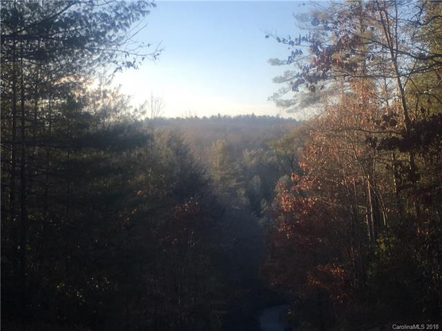 2B Dragon Tail Drive, Brevard, NC 28712 (#3351800) :: Rinehart Realty