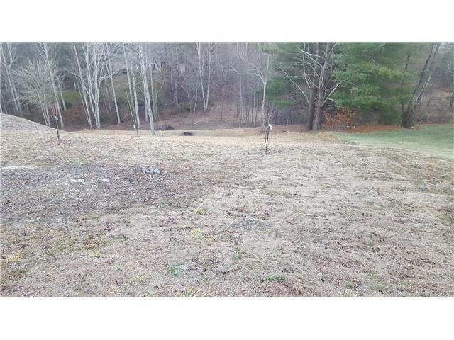 3008 Hickory Nut Trail #53, Hendersonville, NC 28739 (#3352862) :: Zanthia Hastings Team