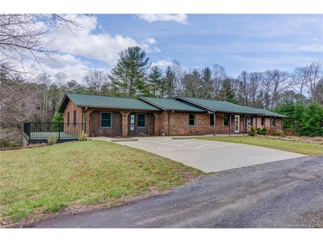 181 Oren Drive, Mills River, NC 28759 (#3353376) :: The Sarver Group