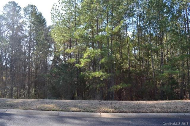 1419 Jack White Drive, Rock Hill, SC 29732 (#3353857) :: Exit Mountain Realty