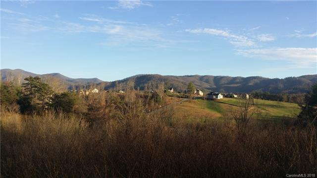 38 Al Dorf Drive #105, Weaverville, NC 28787 (#3354573) :: Besecker Homes Team