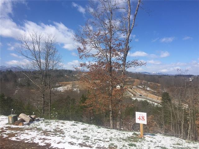 67 Sweet Fern Parkway #48, Asheville, NC 28804 (#3355541) :: LePage Johnson Realty Group, LLC