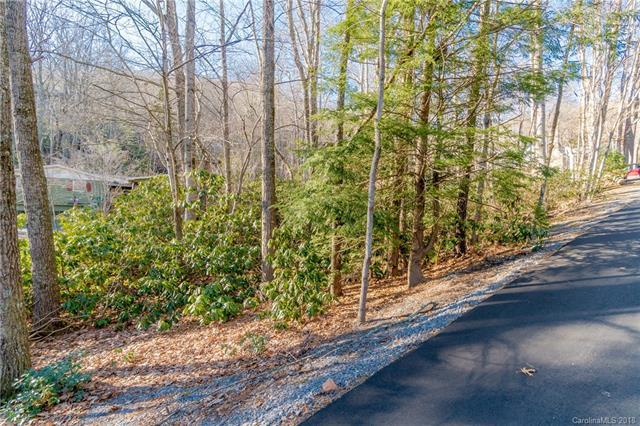 TBD Mecklenburg Circle, Montreat, NC 28711 (#3356428) :: LePage Johnson Realty Group, LLC