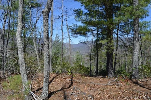 00 Fox Ridge #46, Marion, NC 28752 (#3356626) :: Puffer Properties