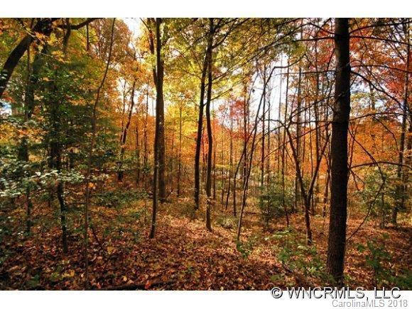 LOT 58 Sweetwater Hills Drive, Hendersonville, NC 28791 (#3357271) :: RE/MAX Four Seasons Realty