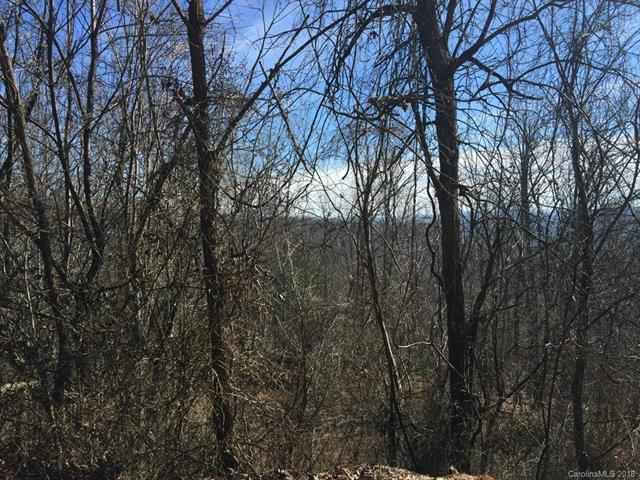 LOT 81 Rowland Drive, Hendersonville, NC 28739 (#3357428) :: LePage Johnson Realty Group, LLC