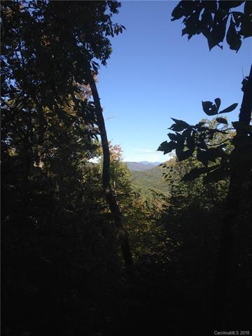 0000 Ridge Vista Road, Gerton, NC 28735 (#3357814) :: Exit Mountain Realty