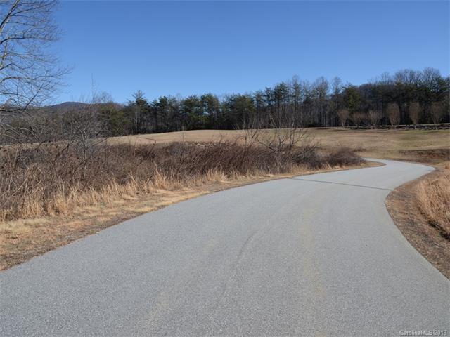 526 Summer Orchard Drive Lot 22, Hendersonville, NC 28792 (#3358059) :: The Premier Team at RE/MAX Executive Realty