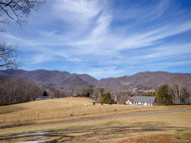 178 Guybro Farms Drive, Canton, NC 28716 (#3358256) :: The Ramsey Group