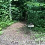 18 Fern Cove Lane Lot 18 Red Oak, Gerton, NC 28735 (#3359414) :: The Temple Team