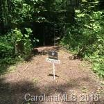 19 Fern Cove Lane Lot 19 White As, Gerton, NC 28735 (#3359418) :: Zanthia Hastings Team