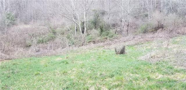 16 & 17 Karen Court, Clyde, NC 28721 (#3362126) :: Exit Mountain Realty