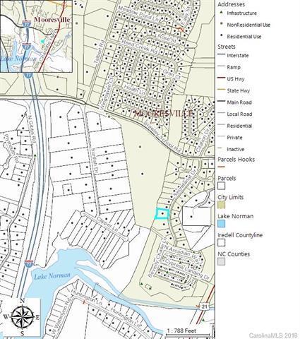 158 Secretariat Lane, Mooresville, NC 28117 (MLS #3363729) :: RE/MAX Impact Realty
