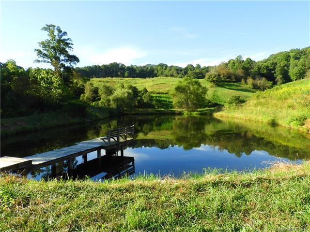1007 Upper Thomas Branch Road, Marshall, NC 28753 (#3365997) :: Puffer Properties