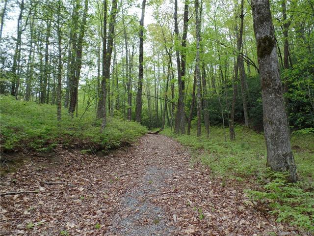 TBD Big Branch Road Lot 56A, Brevard, NC 28712 (#3366101) :: LePage Johnson Realty Group, LLC