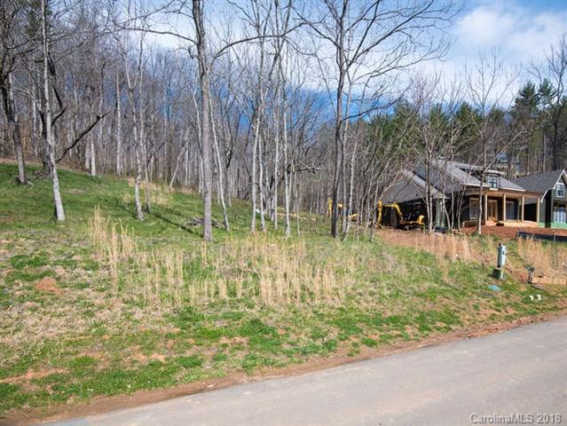 11 Twinflower Trail, Asheville, NC 28804 (#3366474) :: RE/MAX Four Seasons Realty
