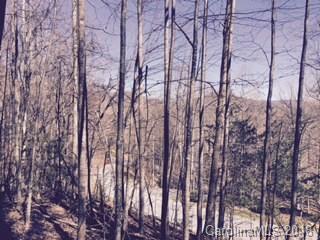 69 Smokemont Drive #9, Arden, NC 28704 (#3366642) :: Robert Greene Real Estate, Inc.