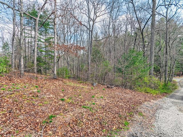 9999 Two Brooks Trail #23, Fletcher, NC 28732 (#3366881) :: LePage Johnson Realty Group, LLC