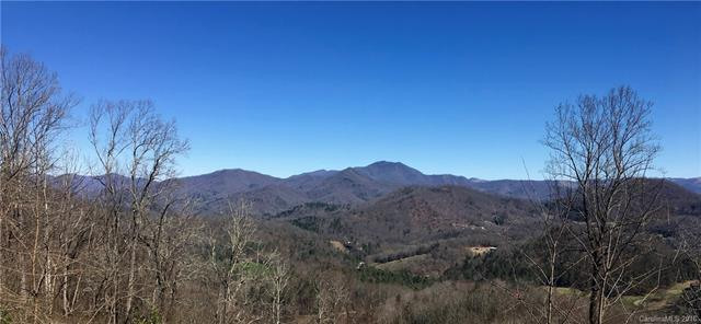 0000 Point Of View Drive #502, Waynesville, NC 28785 (#3367835) :: Zanthia Hastings Team