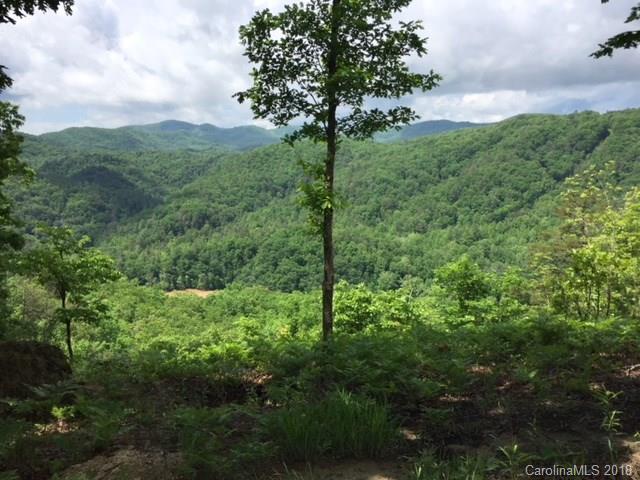 196 Red Fox Trail #41, Marshall, NC 28753 (#3368278) :: Rinehart Realty
