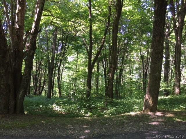 99 Buckeye Ridge #6, Marshall, NC 28753 (#3368372) :: Besecker Homes Team