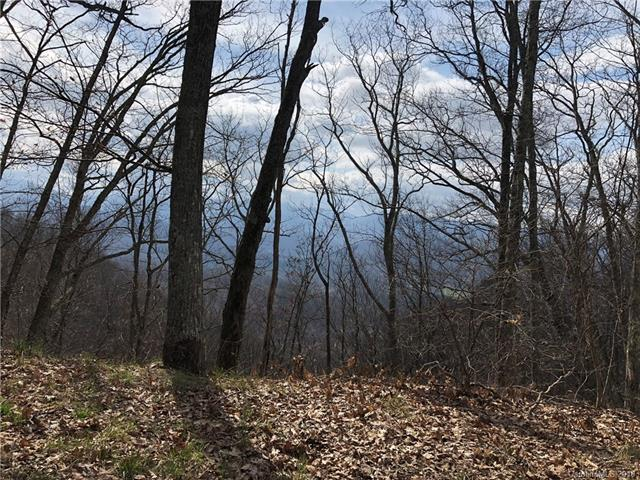 Lot 170 Seven Glens Drive #170, Weaverville, NC 28787 (#3369113) :: RE/MAX Four Seasons Realty