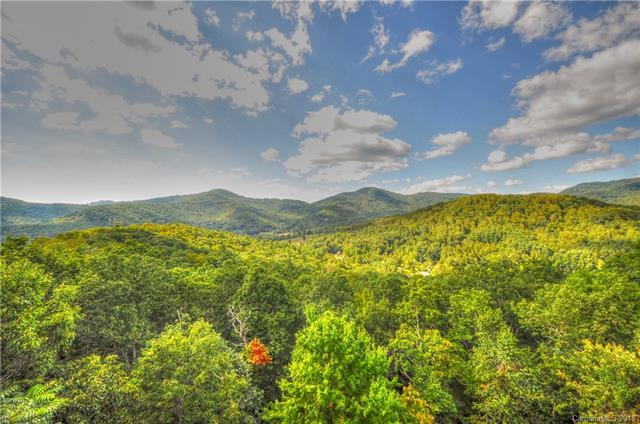 316 Mountain Laurel, Asheville, NC 28805 (#3369400) :: Rowena Patton's All-Star Powerhouse powered by eXp Realty LLC