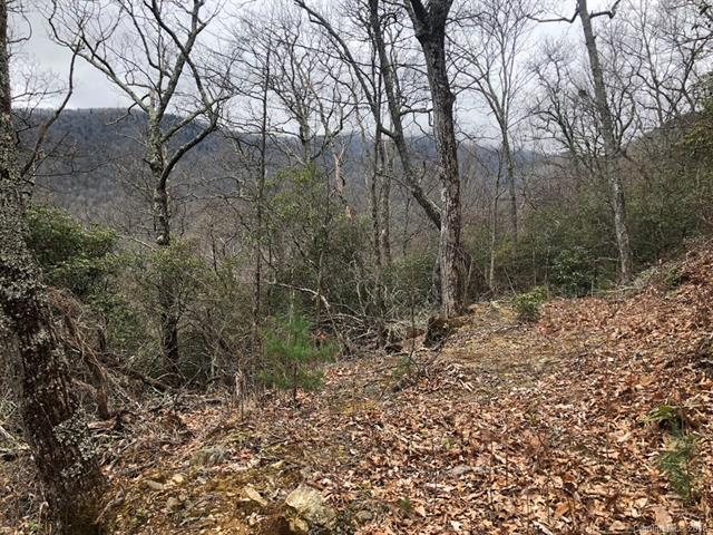 Lot 287 Running Deer Trail, Waynesville, NC 28786 (#3374948) :: Team Southline