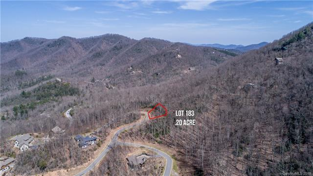 11 Crockett Ridge Road #183, Black Mountain, NC 28711 (#3376184) :: The Temple Team