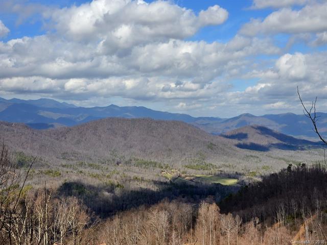 9999 Major Mountain Road, Black Mountain, NC 28711 (#3376546) :: LePage Johnson Realty Group, LLC