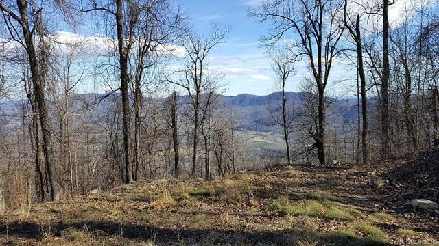 2687 Creston Drive Lot T-26, Black Mountain, NC 28711 (#3378873) :: Puffer Properties
