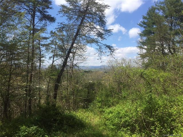 46 Crest Circle Drive #22, Weaverville, NC 28787 (#3379103) :: Exit Mountain Realty