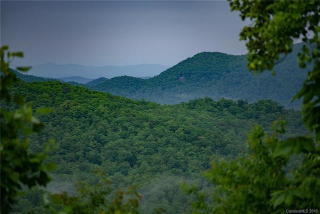 88888 Sand Branch Road, Black Mountain, NC 28711 (#3379811) :: Puffer Properties