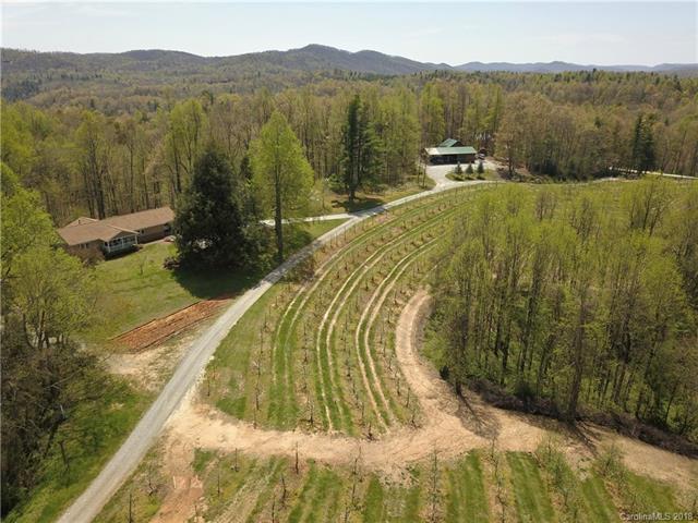 298 Macedonia Church Road, Saluda, NC 28773 (#3381321) :: Burton Real Estate Group