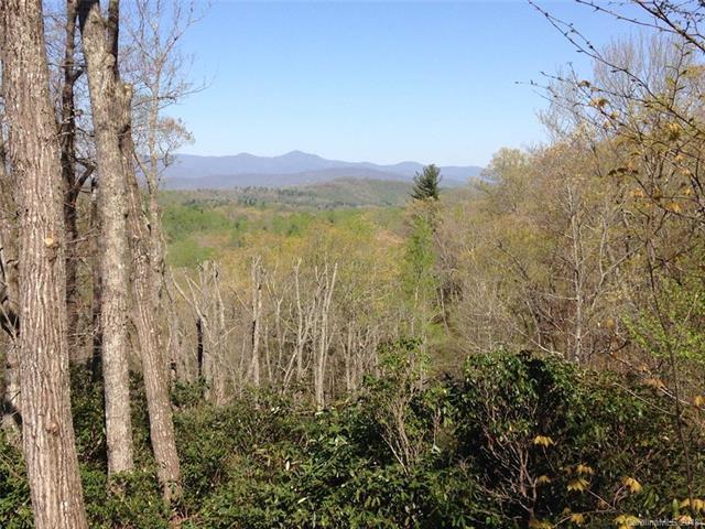 185 Crossvine Trail, Hendersonville, NC 28739 (#3381514) :: The Temple Team
