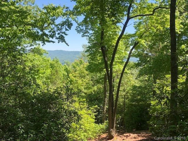 M24 Elk Mountain Trail, Brevard, NC 28712 (#3385637) :: Puffer Properties
