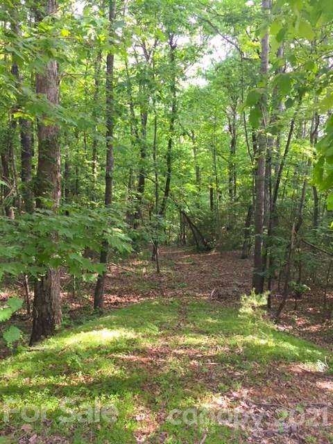 LOT 50 A Oak View Lane, Saluda, NC 28773 (#3387161) :: Odell Realty