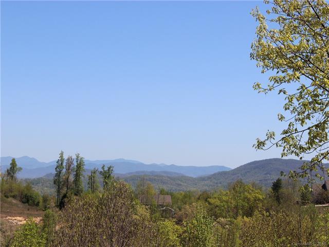 136 Bay Laurel Lane, Hendersonville, NC 28791 (#3387313) :: Exit Mountain Realty