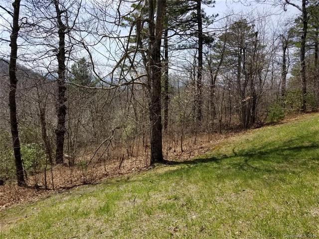 71 Sahalee Trail #1, Hendersonville, NC 28739 (#3387629) :: Puffer Properties
