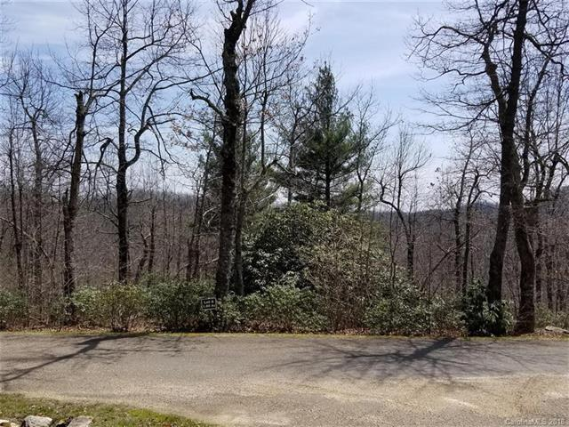 371 Sahalee Trail #6, Hendersonville, NC 28739 (#3387800) :: Puffer Properties