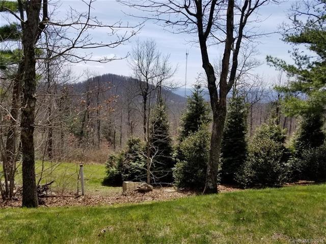 297 Sahalee Trail #5, Hendersonville, NC 28739 (#3387812) :: Puffer Properties