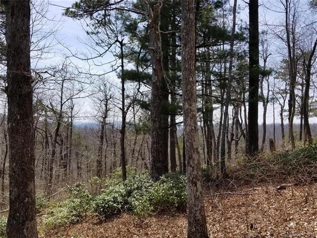 636 Sahalee Trail #32, Hendersonville, NC 28739 (#3387816) :: Puffer Properties
