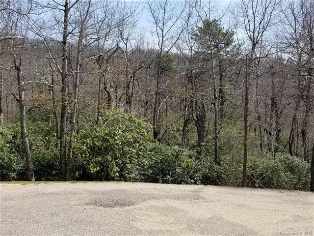 676 Sahalee Trail #33, Hendersonville, NC 28739 (#3387825) :: Puffer Properties