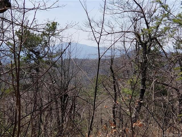 71 & 117 Sahalee Trail 1 & 2, Hendersonville, NC 28739 (#3387832) :: Puffer Properties